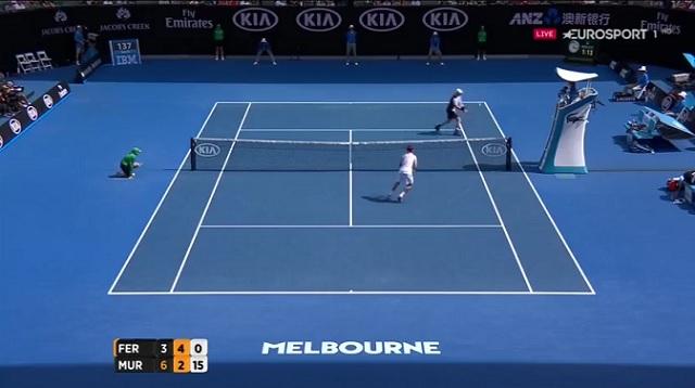Andy Murray et David Ferrer